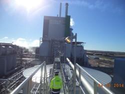 Site inspection, Montes del Plata/Uruguay